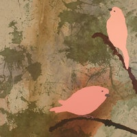 two pink birds